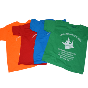 pterodactyl youth shirts
